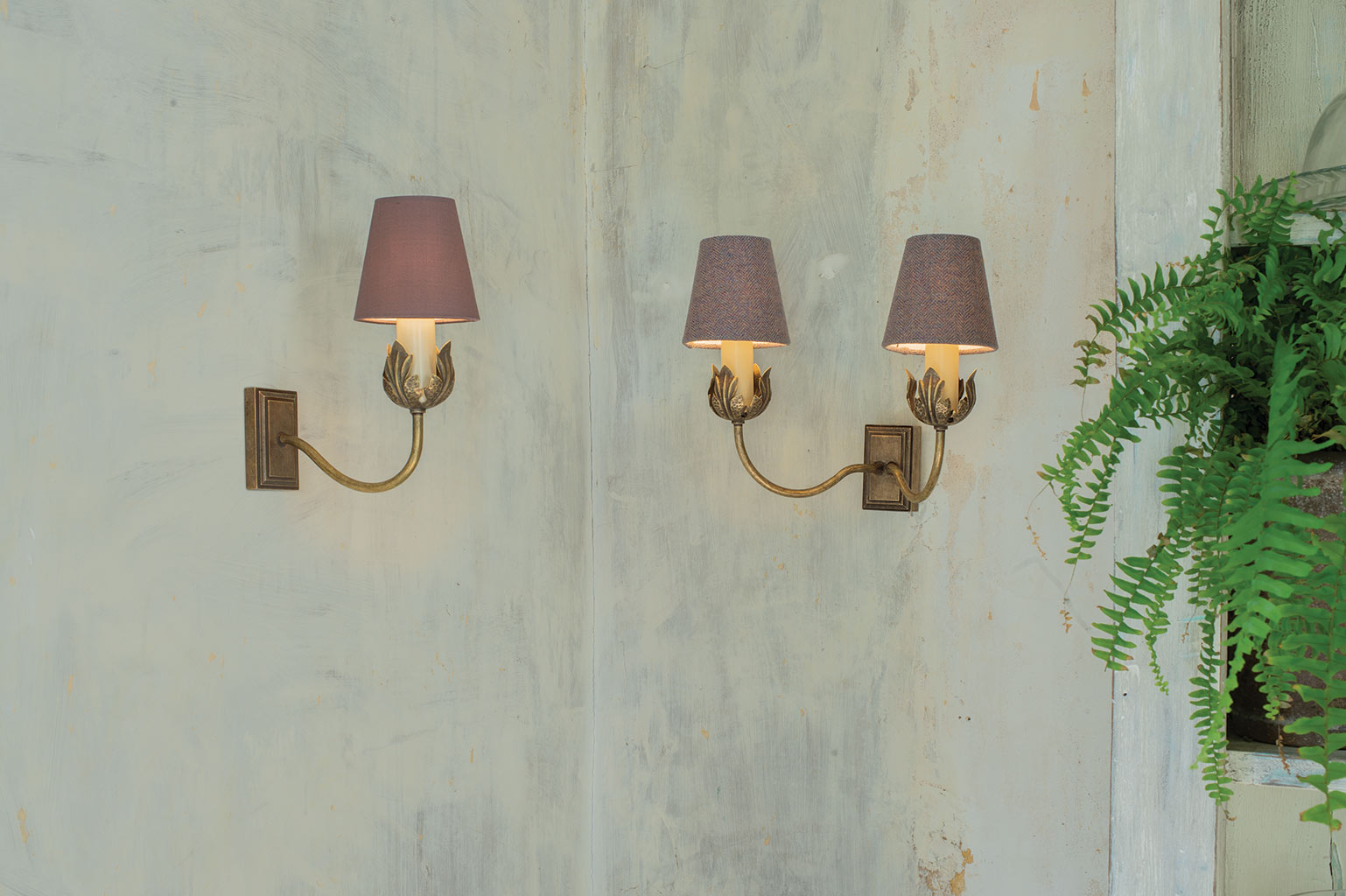 Single Tulip Wall Light in Antiqued Brass