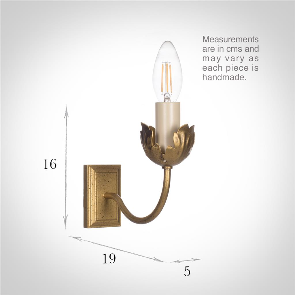 Single Tulip Wall Light in Old Gold