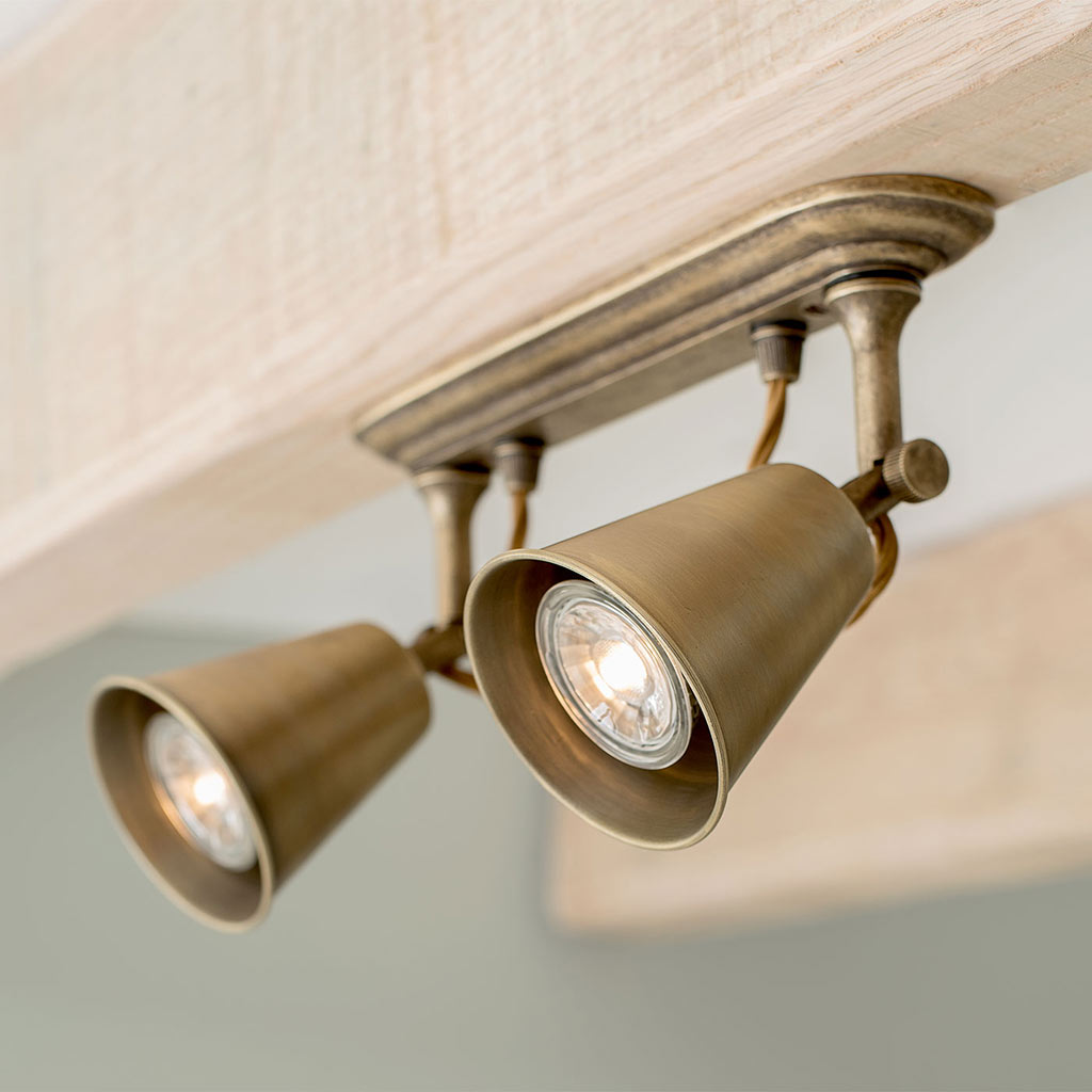 Double Curtis Spot Light in Antiqued Brass