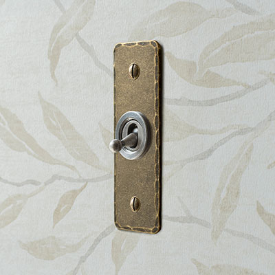 1 Gang Dolly Architrave Switch in Steel with Antiqued Brass Hammered Plate