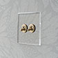 2 Gang Brass Dolly Switch Clear Backplate
