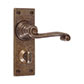 Regency Handle, Bristol Privacy Plate, Antiqued Brass