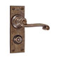 Regency Handle, Ripley Privacy Plate, Antiqued Brass