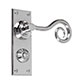 Curled Handle, Ripley Privacy Plate, Nickel